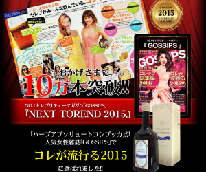 screenshot-www.idea-store.jp 2015-02-22 19-03-41